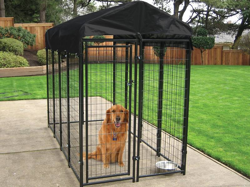 A dog is sitting in the black modular welded kennel in the backyard.